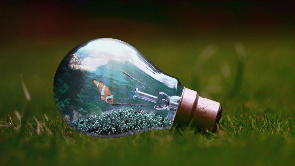 vis in water in lamp